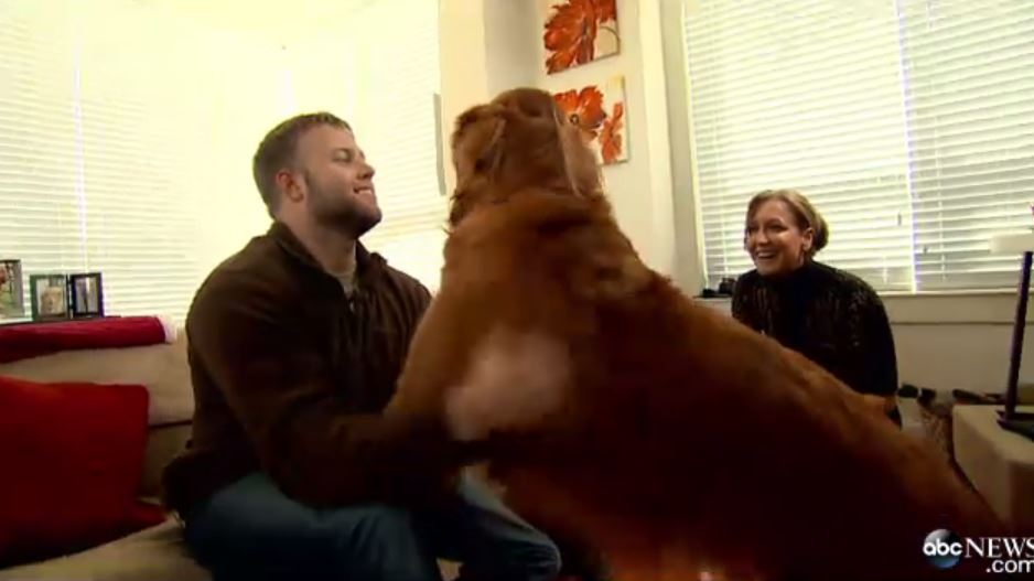 Attachment 29 - A Special Visit With Wounded Warrior Dogs  Video - ABC News